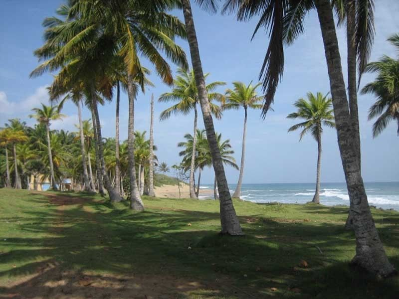 Lots for sale right on the beach by Select Caribbean Properties - Dominican Republic