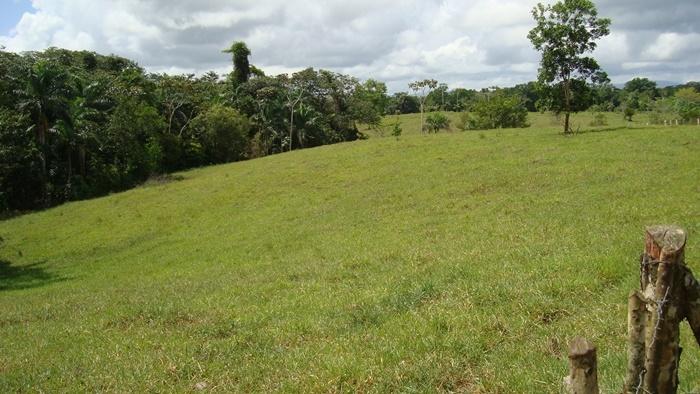 Farm for sale Real Estate Rio San Juan Dominican Republic