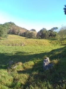 Large rural farm land between Sosua and Cabarete