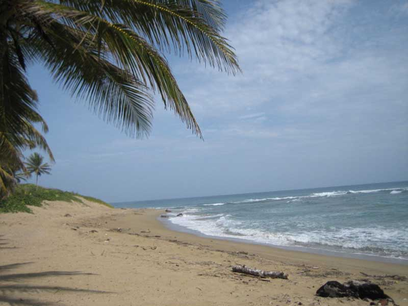 Beachfront land for sale, Dominican Republic