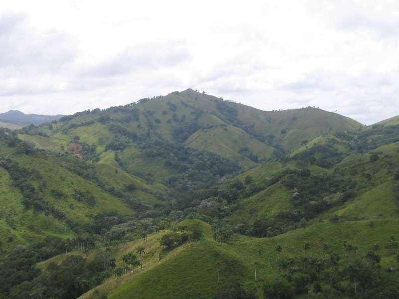 Farm for sale in the Dominican Republic - Finca for sale on the north coast