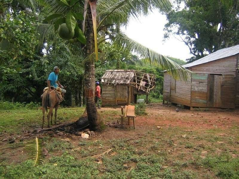 Mountain Farm For Sale In Rio San Juan Dominican Republic