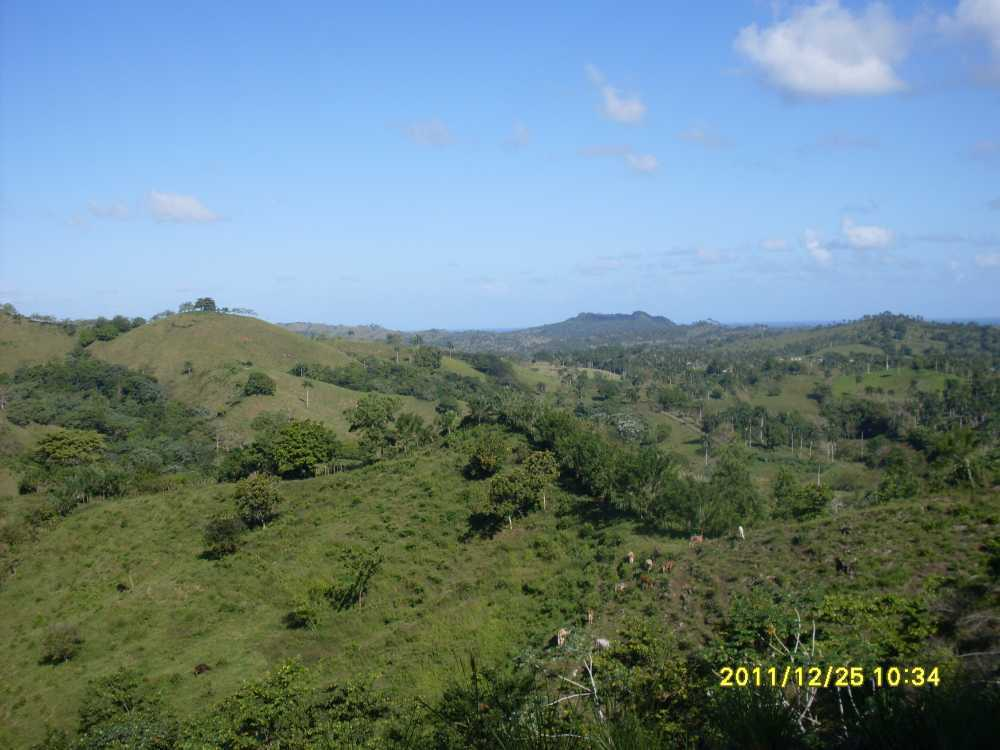 Agriculture Farm Near Rio San Juan | Dominican Republic Land For Sale
