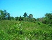 Farm for sale with panoramic view in the Dominican Republic
