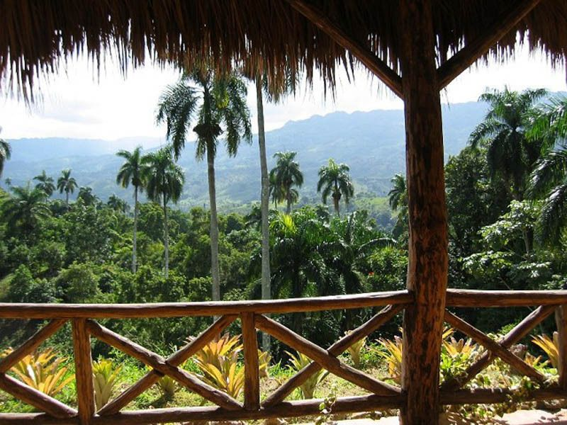 Tropical plantation for sale in Puerto Plata, Dominican Republic