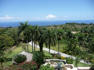 Abreu El Breton Ocean View Dominican Republic