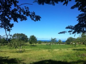 Land & Lots For Sale in Cabarete, Sosua - Dominican Republic