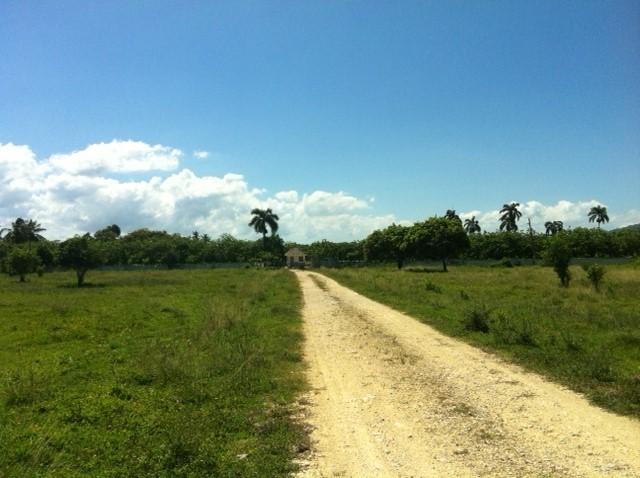 Sabaneta - DOM (photo 1)