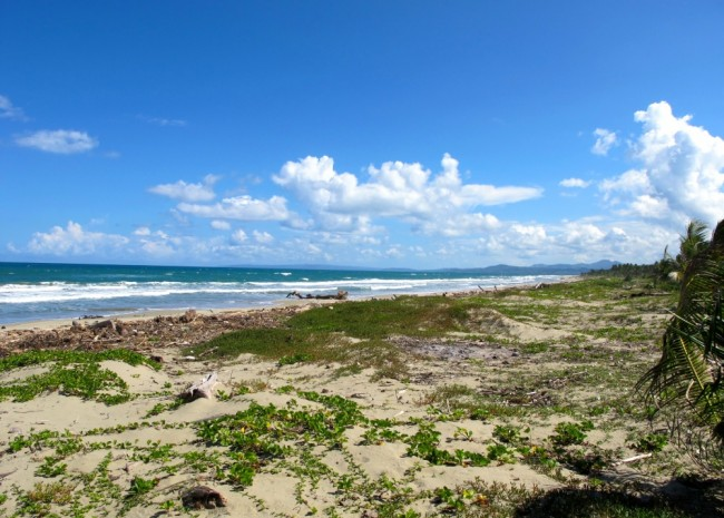 Oceanfront Cattle Ranch in Sabaneta for sale, DomRep