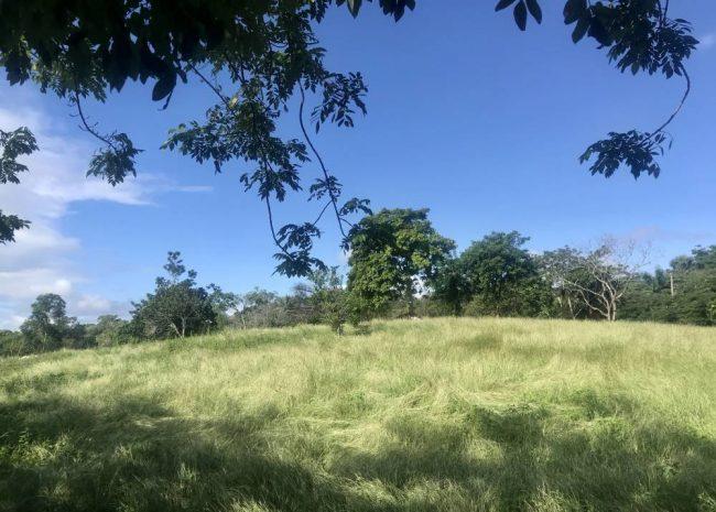 Cabarete 3-acres lot, Dominican Republic