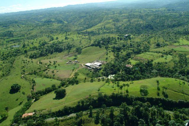Dominican Republic Dairy Farm