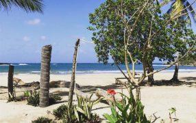 Caribbean Beachfront Property, Dominican Republic