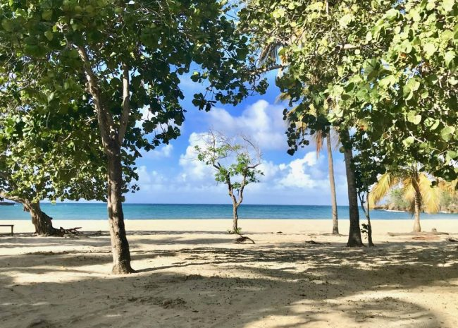 Caribbean Beachfront Property, Cambiaso, Dominican Republic