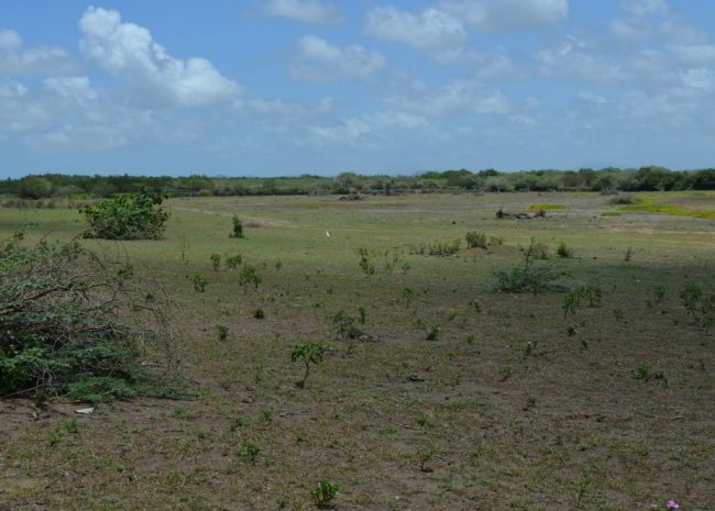 Beachfront investment land Luperon, Dominican Republic
