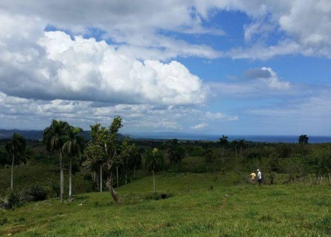 Dominican Republic Farming, Rio San Juan