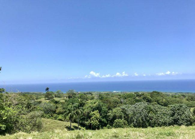 Dominican Republic Sustainable Farm