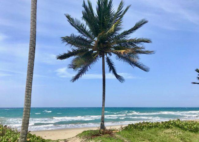 Beachfront Lot, Cabarete, Dominican Republic