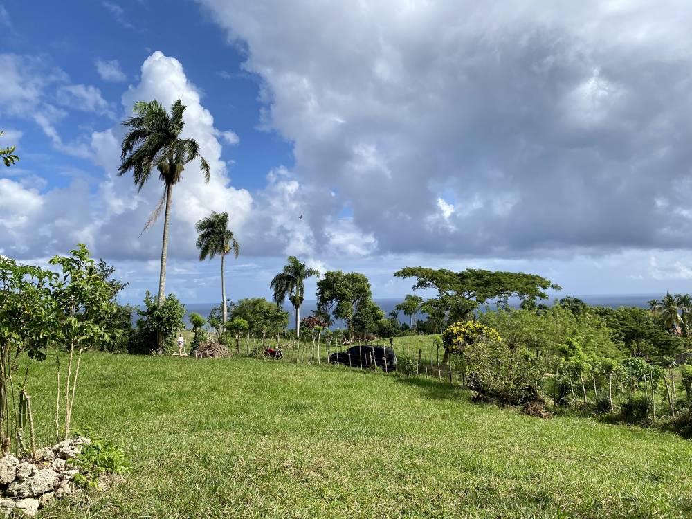 Cabrera Ocean View Lots, Dominican Republic